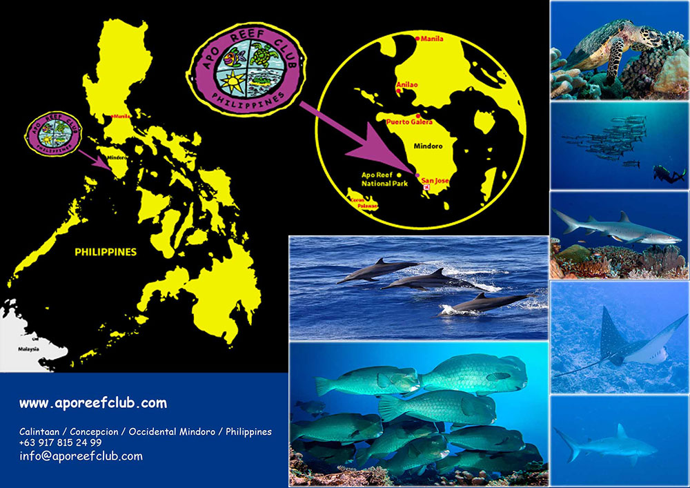 Apo Reef Club Location map